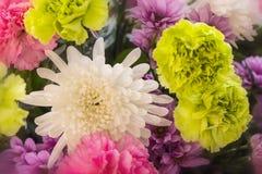 Zamyka w górę abstrakcjonistycznego kwiatu tła Obraz Royalty Free