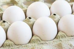 Zamyka w górę brudnych uncoocked białych jajek w pudełku obrazy stock