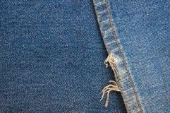 Zamyka w górę cajgu tła tekstury Fotografia Stock