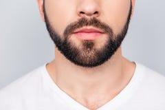 Zamyka w górę cropped fotografii tytułowanie brunet ` s faceta broda, iso Zdjęcia Stock
