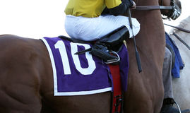 Zamyka W górę dżokeja na koniu wyścigowym zdjęcia stock