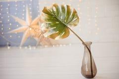 Zamyka w górę drzewka palmowego w garncarstwie fotografia royalty free