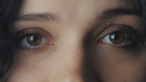 Zamyka w górę dużych kobiety ` s brązu oczu zbiory wideo