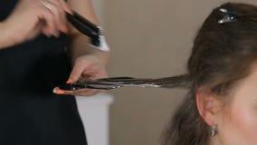 Zamyka w górę fachowego fryzjera, stylista barwi nastoletniego dziewczyna włosy zbiory