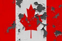 Zamyka w górę grungy, uszkadzającej i wietrzejącej Kanada flagi na ścianie struga daleko farbę widzieć wśrodku powierzchni, zdjęcie stock