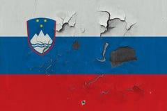 Zamyka w górę grungy, uszkadzającej i wietrzejącej Slovenia flagi na ścianie struga daleko farbę widzieć wśrodku powierzchni, obrazy royalty free