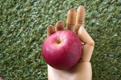 Zamyka w górę jabłka w ręce Obrazy Royalty Free