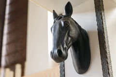 Zamyka w górę końskiej głowy na ścianie używać dla dekoraci obraz royalty free