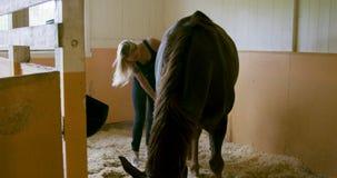 Zamyka w górę kobiety szczotkuje koński salowego przy stajenką zbiory