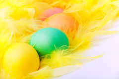 Kolorowi Easter jajka na kolor żółty piórku Fotografia Stock