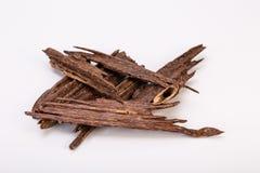 Zamyka W górę Makro- strzału kije agaru Agarwood Lub drewno Zdjęcie Royalty Free