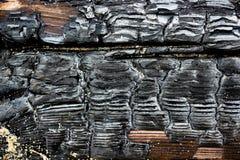 Zamyka w górę obrazka palący drewniany węgiel zdjęcia royalty free