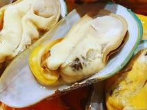 Zamyka w górę odparowani mussels gotującego stku jako tło zdjęcia royalty free