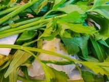 Zamyka w górę ostrość seleru w talerzu zdjęcie stock