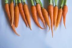 Zamyka w górę pomarańczowej marchewki Obraz Royalty Free
