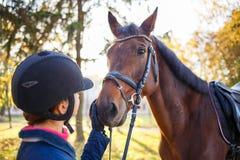 Zamyka w górę portreta podpalany koń z jeździec dziewczyną fotografia stock