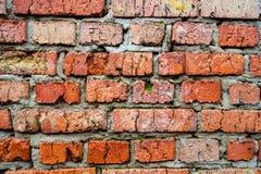 Ściana z cegieł tło Fotografia Royalty Free