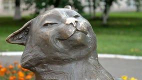 Zamyka w górę strzału koty monumant zbiory
