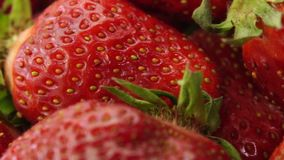 Zamyka w górę szczegółu świeże czerwone truskawki zdjęcie wideo