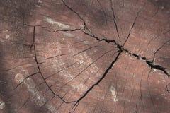 Zamyka w górę szczegółu drewniana ściana Zdjęcie Royalty Free