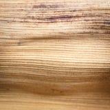 Zamyka w górę tekstury wysuszony palmowy liść Obrazy Stock