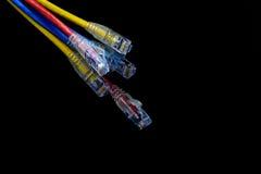 Zamyka w górę UTP kabli łaty sznura Obraz Stock