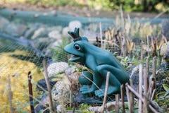 Zamyka w górę widoku żaba ogródu statua jest ubranym koronę Zdjęcia Stock