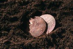 zamyka w górę widoku brązowi bitcoins zdjęcia royalty free