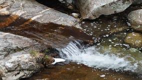 Zamyka w górę widoku czysty strumienia bieg w staw zbiory