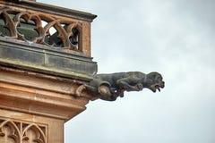 Zamyka w górę widoku gargulec w Katedralnym kościelnym Świętym Vitus Praga cesky krumlov republiki czech miasta średniowieczny st obrazy stock