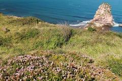 Zamyka w górę widoku na roślinności jeden i ogromnej falezy skale deux jumeaux w atlantyckim oceanie z fala w niebieskim niebie Obrazy Stock