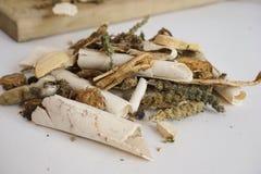 Zamyka w górę widoku różnorodni organicznie ziele dla robić holistycznej herbaty obrazy royalty free