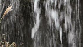 Zamyka w górę widoku spadać kaskadą wodę pod siklawą zdjęcie wideo