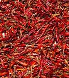 Zamyka w górę wiele czerwonego chili zdjęcie royalty free