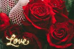 Zamyka w górę wizerunku czerwone róże i wod krople po deszczu wysoki Zdjęcie Royalty Free