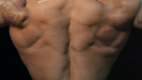 Zamyka w górę wspaniałego mięśniowego plecy zbiory