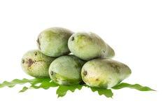 Zamyka w górę zielonego mango z liściem odizolowywającym na bielu Zdjęcie Royalty Free