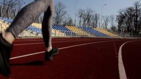 Zamyka w górę zwolnione tempo strzału młody sportowy atrakcyjny dysponowany kobieta bieg jogging, plenerowy stadium trening na sł zdjęcie wideo