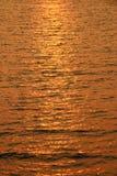 Zamyka w górę morze fala Obraz Stock
