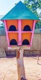 Zamyka w górę widoku drewniany ptaka gniazdeczko, ECR, Chennai, Tamilnadu, India, Jan 29 2017 zdjęcie royalty free