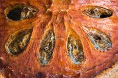 Zamyka w górę wysuszonej plasterka bael owoc Fotografia Stock