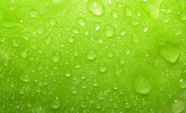 zamykają się zielone jabłka Zdjęcia Royalty Free