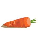 Zanahoria apetitosa aislada en un backgrond blanco Fotos de archivo libres de regalías
