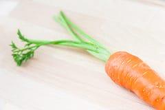 Zanahoria auténtica Fotografía de archivo libre de regalías