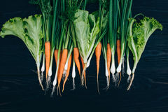 Zanahoria, cebolla y ensalada jovenes El cocinar con las verduras frescas Imagen de archivo