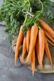 Zanahoria con las hojas Imágenes de archivo libres de regalías