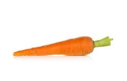 Zanahoria de bebé fresca en un fondo blanco fotos de archivo libres de regalías