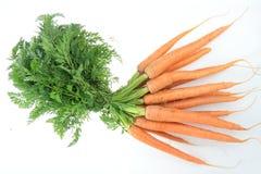 Zanahoria de Fresch imagen de archivo libre de regalías