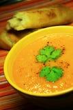 Zanahoria de la sopa Imagen de archivo libre de regalías