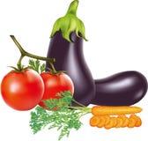 Zanahoria del tomate de la berenjena imagen de archivo